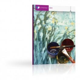 http://www.homeschool-shelf.com/1156-thickbox_default/lifepac-art-set.jpg